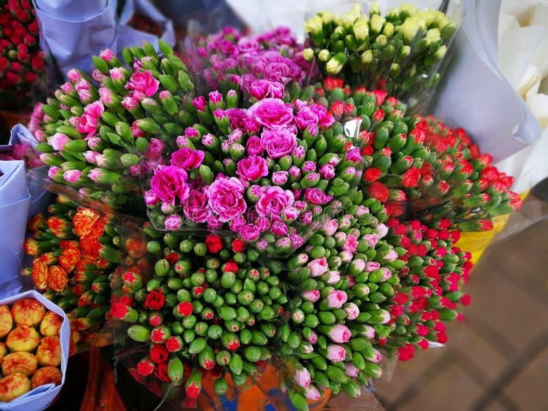 Verschiedene Arten von Hong Kong-Rosen stockbilder