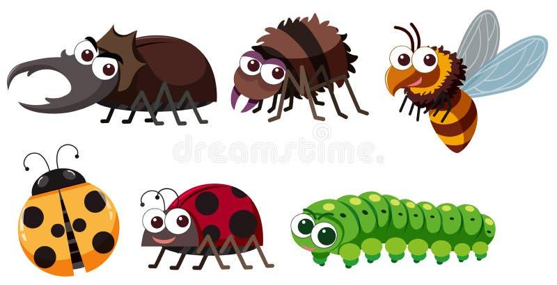 Verschiedene Arten von Insekten auf weißem Hintergrund stock abbildung