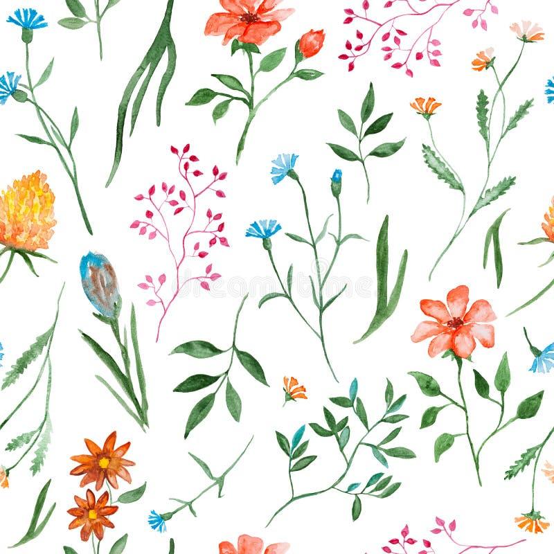 Verschiedene Blumen, Aquarellmalen - Handgezogenes nahtloses Muster mit Blüte auf weißem Hintergrund vektor abbildung