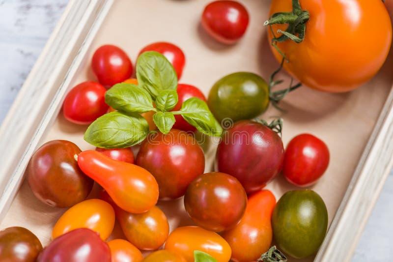 Verschiedene bunte Tomaten und Basilikumblätter in einer Holzkiste auf weißem Holztisch stockfotografie