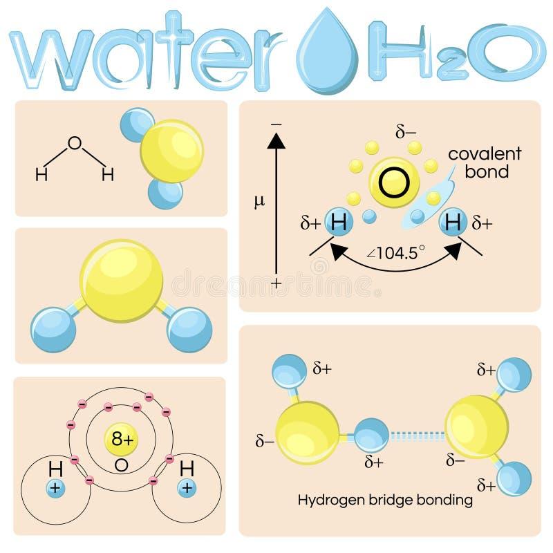 Verschiedene Darstellungen des Wassermoleküls H2O stock abbildung