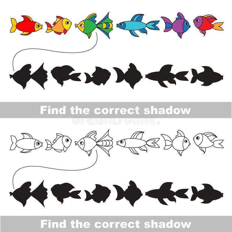 Verschiedene Fische eingestellt Finden Sie korrekten Schatten lizenzfreie abbildung