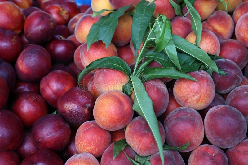 Verschiedene Früchte für Verkauf in einem Markt in Kroatien stockfoto