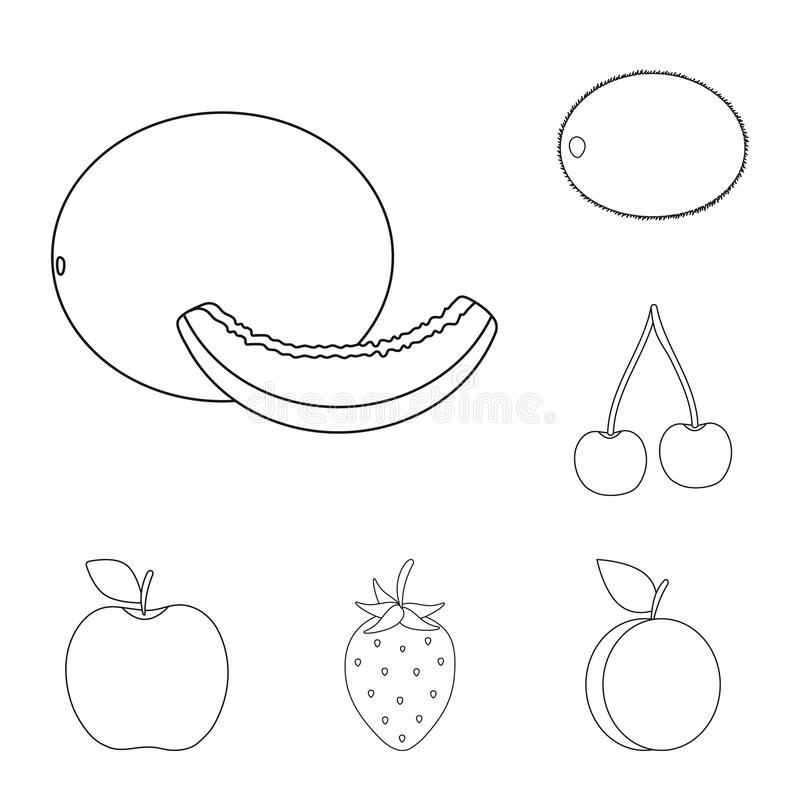 Verschiedene Früchte umreißen Ikonen in der Satzsammlung für Design Früchte und Vitamine vector Netzillustration des Symbols auf  vektor abbildung