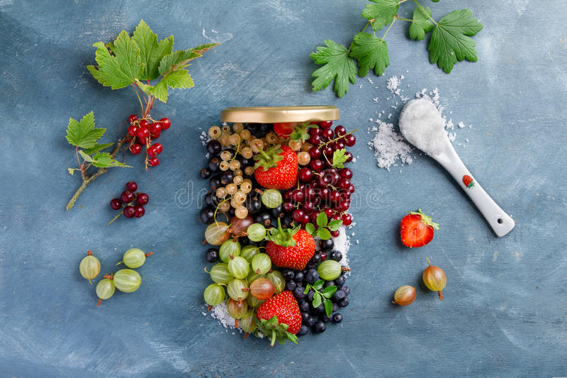 Verschiedene frische Beeren lizenzfreies stockbild