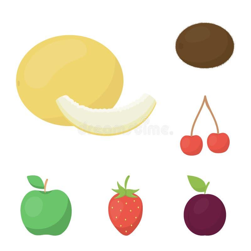 Verschiedene Fruchtkarikaturikonen in der Satzsammlung für Design Früchte und Vitamine vector Netzillustration des Symbols auf La stock abbildung