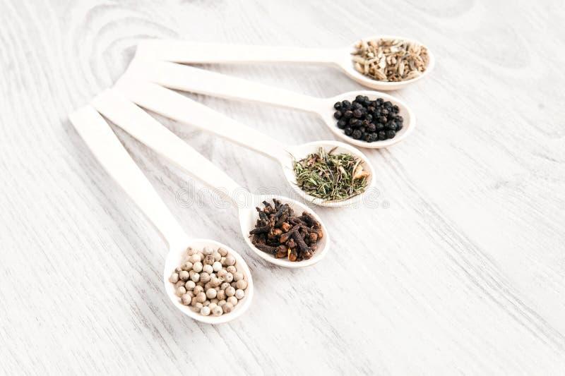 Verschiedene Gewürze und Kräuter in den hölzernen Löffeln auf weißem Tabellenhintergrund Aromatisches Lebensmittel, das Bestandte lizenzfreies stockbild