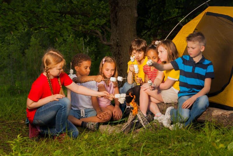 Verschiedene Kinder mit Eibisch behandeln nahe Feuer lizenzfreie stockfotos