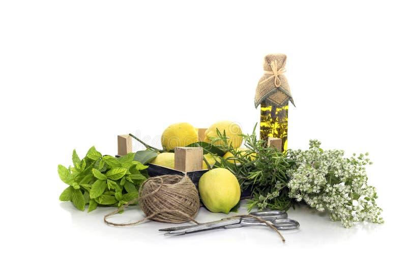 Verschiedene Kräuter, Gewürze, Zitronen und Olivenöl auf einem weißen Hintergrund lizenzfreies stockbild