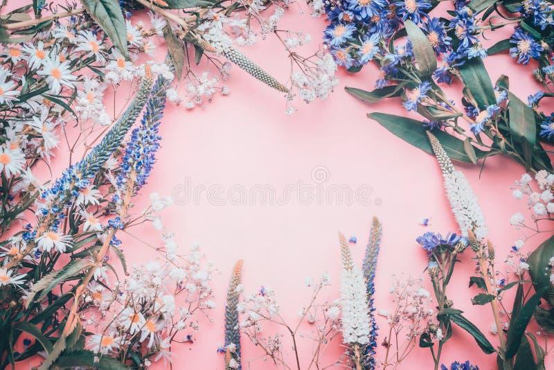 Verschiedene reizende Blumen am rosa blassen Hintergrund, Draufsicht stockfoto