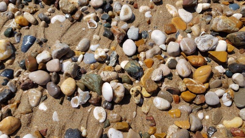 Verschiedene Seesteine und -Muscheln auf dem nassen Strandsand lizenzfreie stockfotografie
