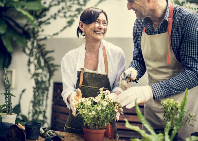 Verschiedene Senioren, die zusammen Blumen pflanzen stockfotos