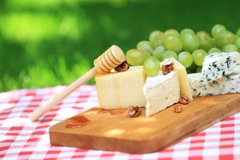 Verschiedene Sortierungen des Käses und der Trauben lizenzfreies stockbild