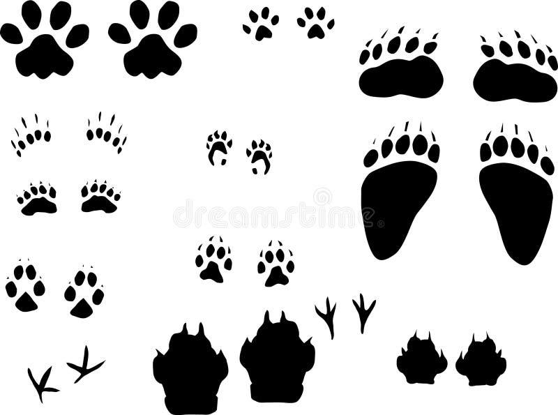 Verschiedene Tierspuren stellten ein vektor abbildung