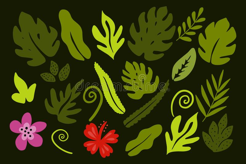 Verschiedene tropische Blätter auf grünem Hintergrund vektor abbildung