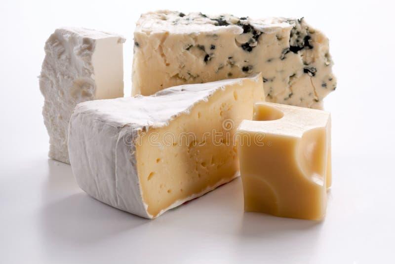 Verschiedene Typen der Käse. stockbilder
