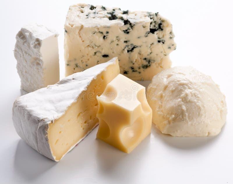 Verschiedene Typen der Käse. lizenzfreie stockbilder