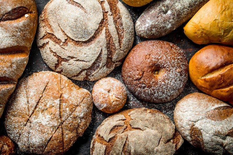 Verschiedene Typen des Brotes lizenzfreies stockfoto