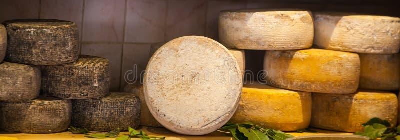 Verschiedene Typen des Käses lizenzfreie stockfotografie
