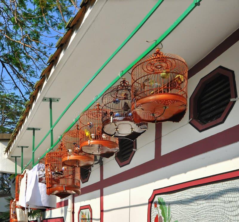 Verschiedene Vögel In Den Käfigen Im Markt Stockbild - Bild von ...