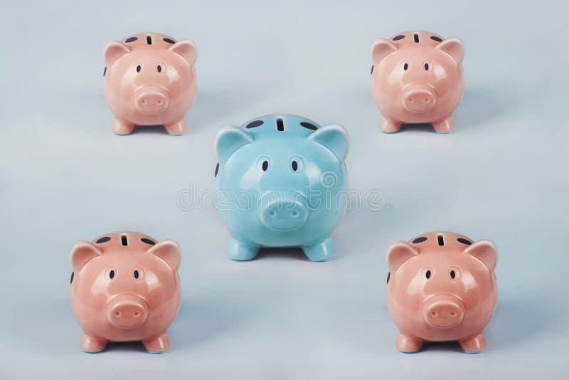 Verschiedenes farbiges Sparschwein aus der Menge Das Einzigartigkeit- und Führungskonzept, die Individualität und der Unterschied lizenzfreie stockfotografie