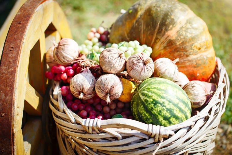 Herbstfrüchte Für Danksagung Stockfoto