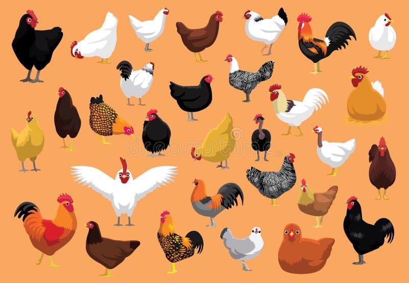 Verschiedenes Huhn züchtet Geflügel-Karikatur-Vektor-Illustration lizenzfreie abbildung