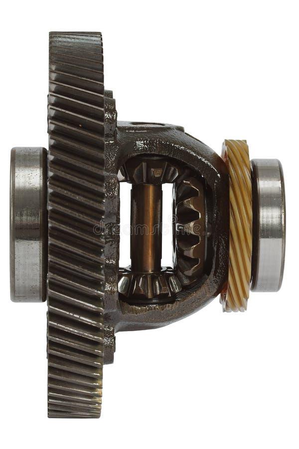 Verschil van de versnellingsbak, op witte achtergrond wordt geïsoleerd die stock afbeelding