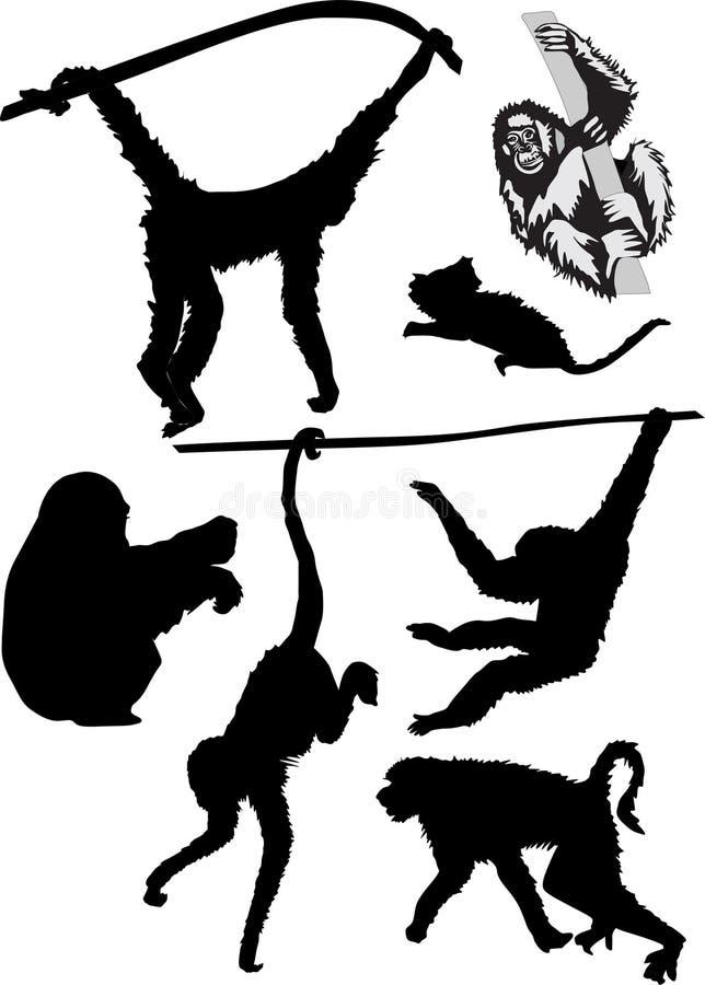 Verschillende aapsilhouetten royalty-vrije illustratie