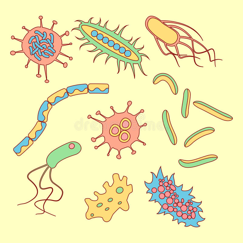 Verschillende bacteriëntypes royalty-vrije illustratie