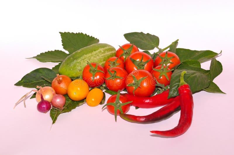 Verschillende groenten op witte achtergrond royalty-vrije stock foto