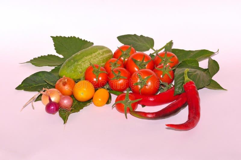 Verschillende groenten op witte achtergrond stock foto's