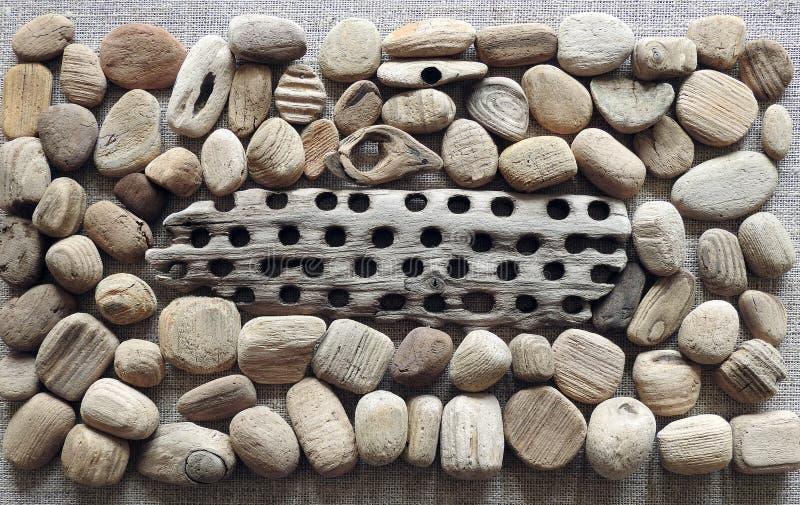 Verschillende houten die stukken op overzeese kust, Litouwen worden gebaseerd royalty-vrije stock foto's