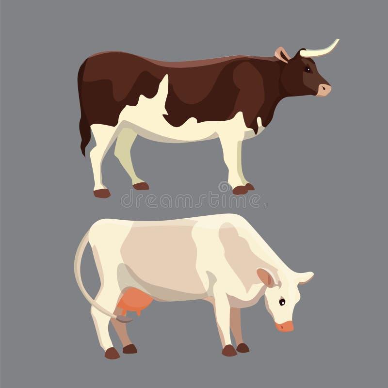 Verschillende koeien, Vectorillustratie Zoogdier grappige dieren Vastgestelde melkkoe en stier royalty-vrije illustratie