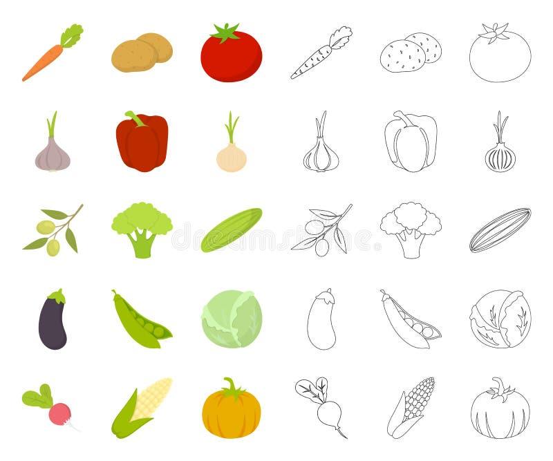 Verschillende soorten groentenbeeldverhaal, overzichtspictogrammen in vastgestelde inzameling voor ontwerp Groenten en vitaminen  vector illustratie
