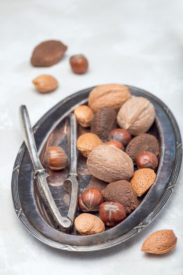 Verschillende soorten noten in shell: hazelnoot, okkernoot, amandel en paranoten op plaat met nootcracker op verticale achtergron royalty-vrije stock afbeelding