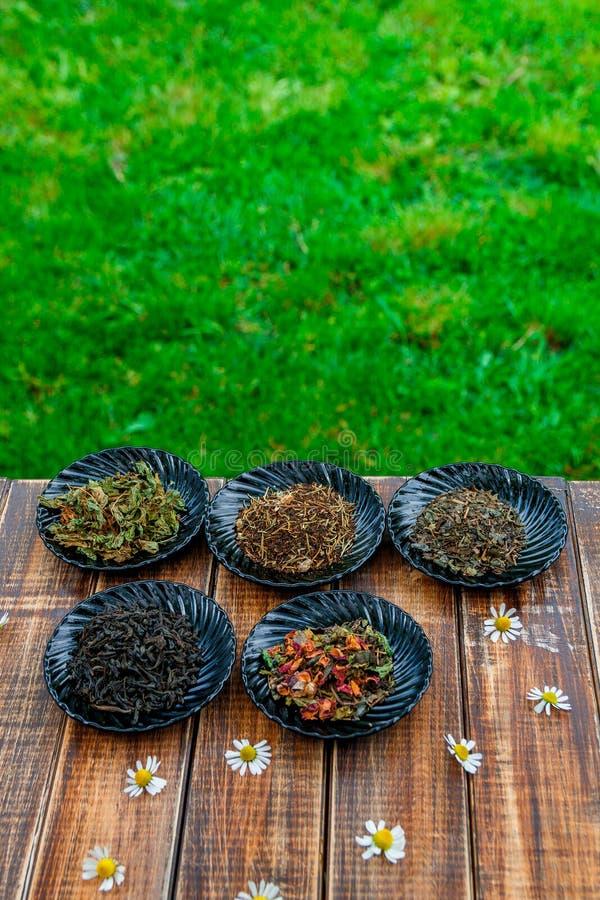 Verschillende soorten thee op zwarte platen houten lijst met bloemenkamille op tuin en aardachtergrond Droog assortiment stock foto's