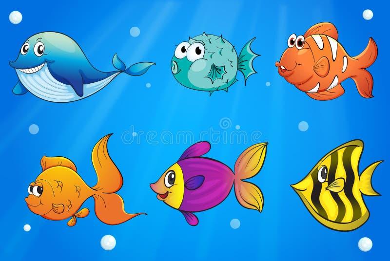Verschillende soorten vissen onder de oceaan stock illustratie