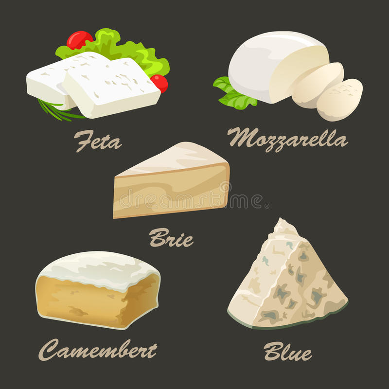 Verschillende soorten witte kaas Realistische vectorillustratie royalty-vrije illustratie