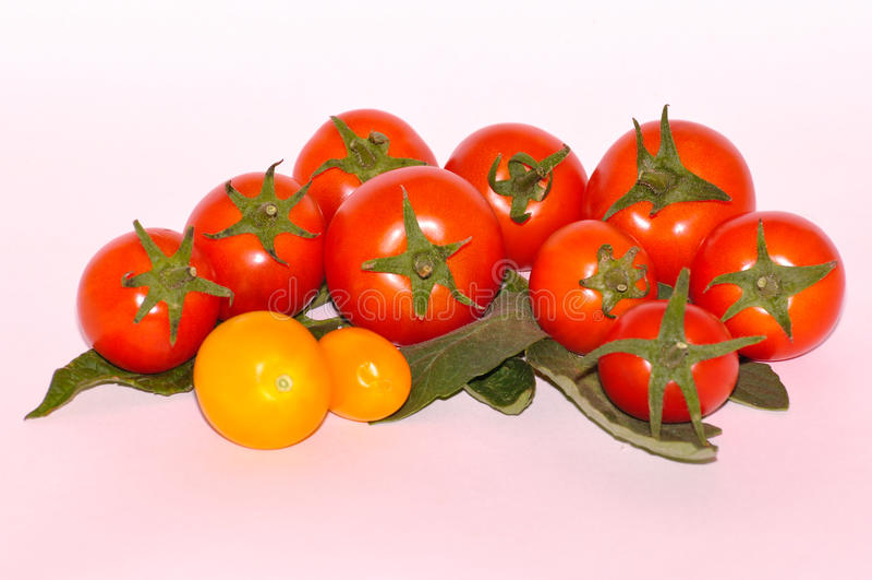 Verschillende tomaten op witte achtergrond stock afbeeldingen