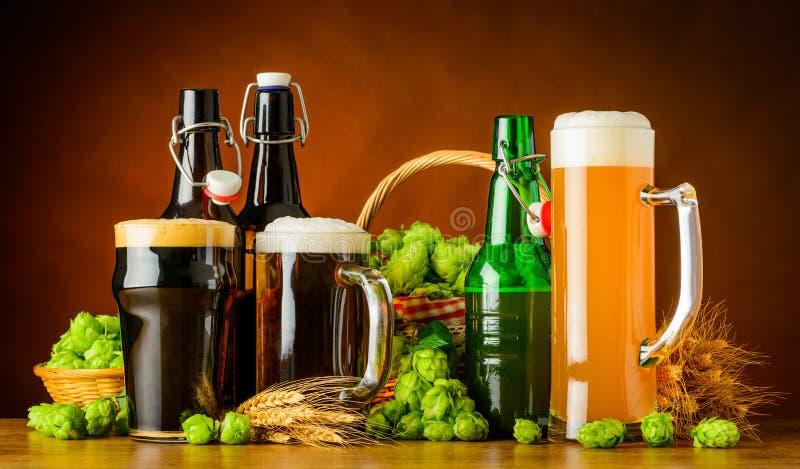Verschillende Types van Bier en het Brouwen Ingrediënten royalty-vrije stock foto's