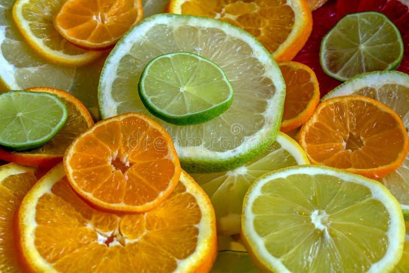 Verschillende types van citrusvrucht, besnoeiing in cirkels stock afbeeldingen