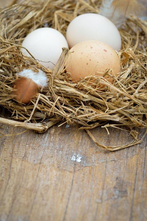 Verschillende types van eieren in kom op houten lijst stock foto