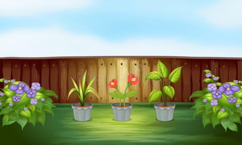 Verschillende types van installatie binnen de houten omheining stock illustratie
