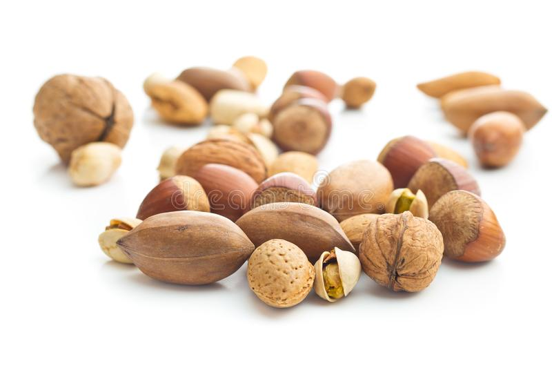 Verschillende types van noten in de notedop royalty-vrije stock foto