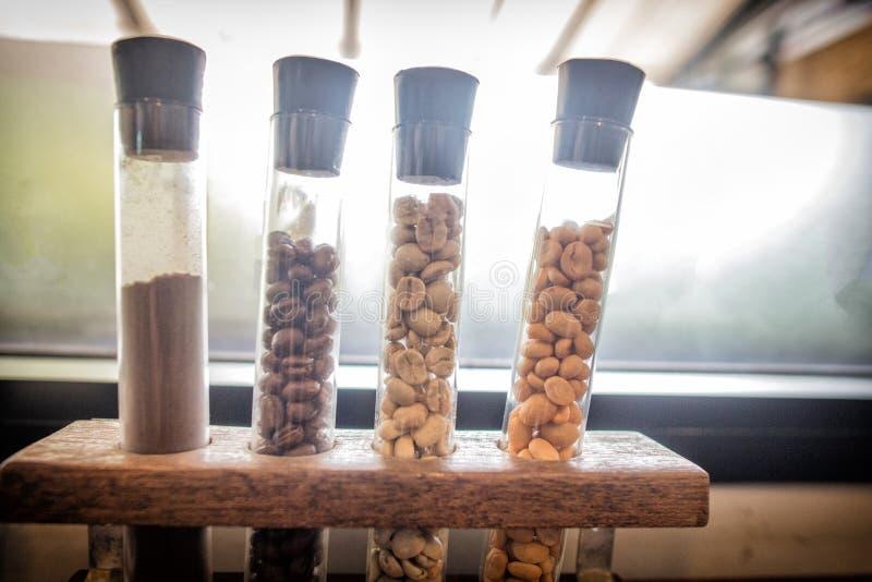 Verschillende verscheidenheden van verse arabica koffiebonen in buis uit de hele wereld in verschillende kleur ruwe en geroosterd stock afbeeldingen