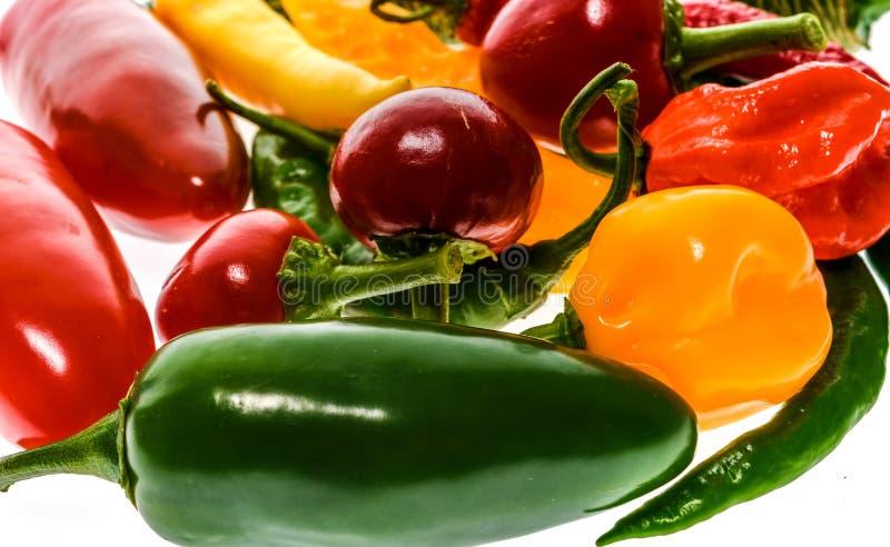 Verschillende verscheidenheid van hete die peper of Spaanse pepers, op wit wordt geïsoleerd stock afbeelding