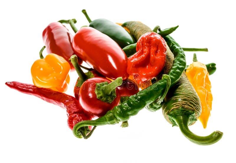 Verschillende verscheidenheid van hete die peper of Spaanse pepers, op wit wordt geïsoleerd stock fotografie