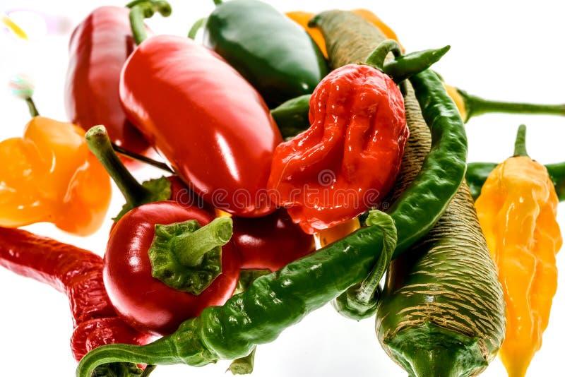 Verschillende verscheidenheid van hete die peper of Spaanse pepers, op wit wordt geïsoleerd royalty-vrije stock foto