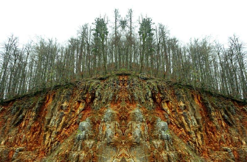 Verschmutzung der Natur und der Konsequenz Abstrakte Ansicht des kranken Baums in krankem Wald nach saurem Regen stockfotografie